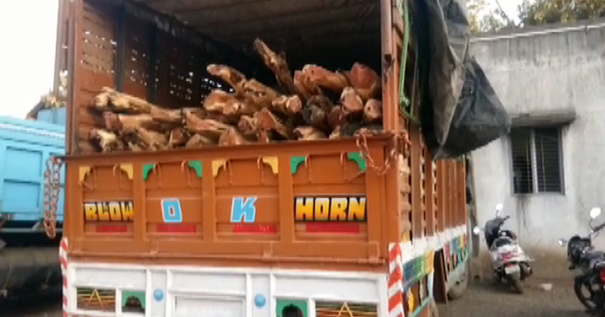 Kher wood smuggling 2